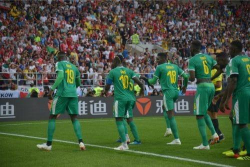 Senegal feiert den Sieg gegen Polen am 1.Gruppenspieltag.  A.RICARDO / Shutterstock.com