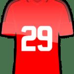 Rückennummer 29