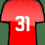 Rückennummer 31